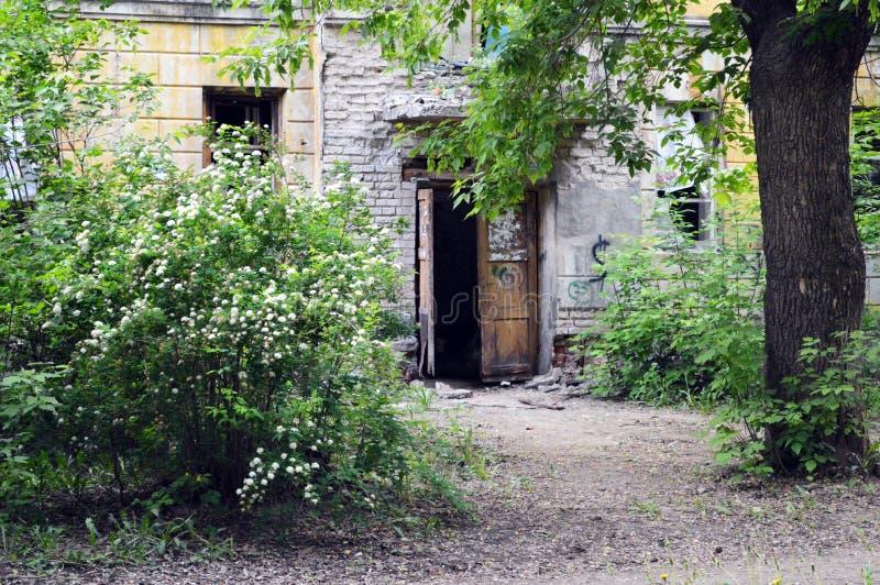 Drzwi zaniechany dom, stoi w zwartych gąszczach obraz royalty free