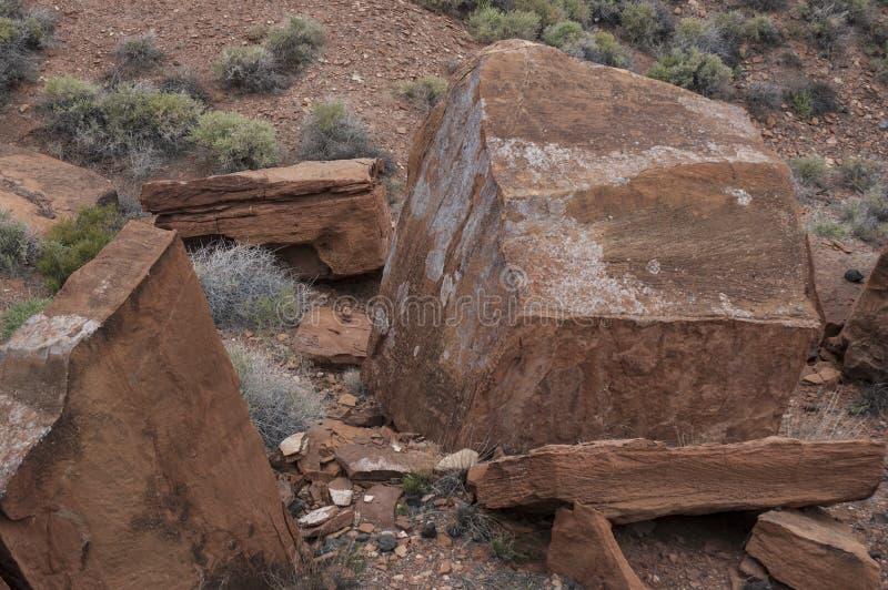 Dsc_0098 Desert - Southwest USA. Desert in Southwest United States royalty free stock photography