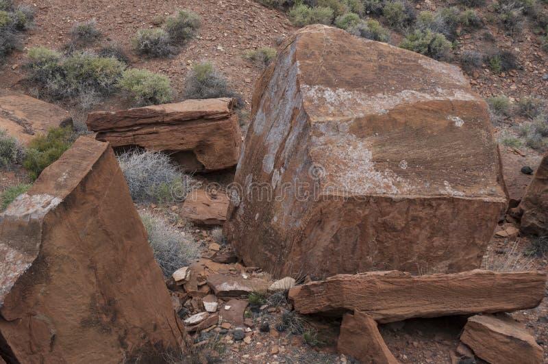 Dsc_0098 Desert - Southwest USA. Desert in Southwest United States stock image