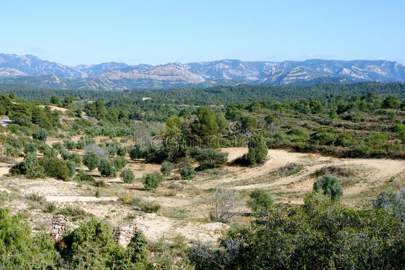 Olive and almond gardens in the vicinity of the village of Cretas. Against the backdrop of the mountain range Puerto de beceite Teruel province, Aragon, Spain royalty free stock image