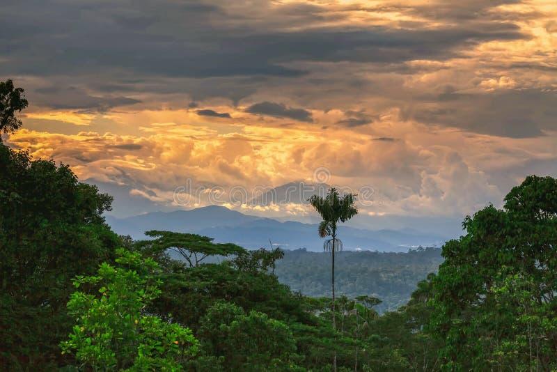 Dschungel Sangay Volcano Rising Up From The lizenzfreie stockfotografie