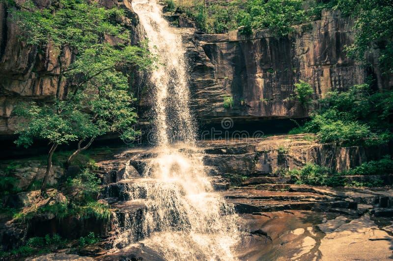 Dschungel-Wasserfall stockfotografie