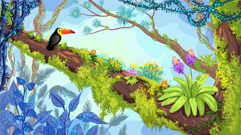 Dschungelwaldillustration des Tukans sitzend auf dem Baum Vecto vektor abbildung
