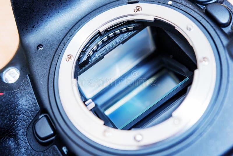 DSLR-kameraspegel arkivbild