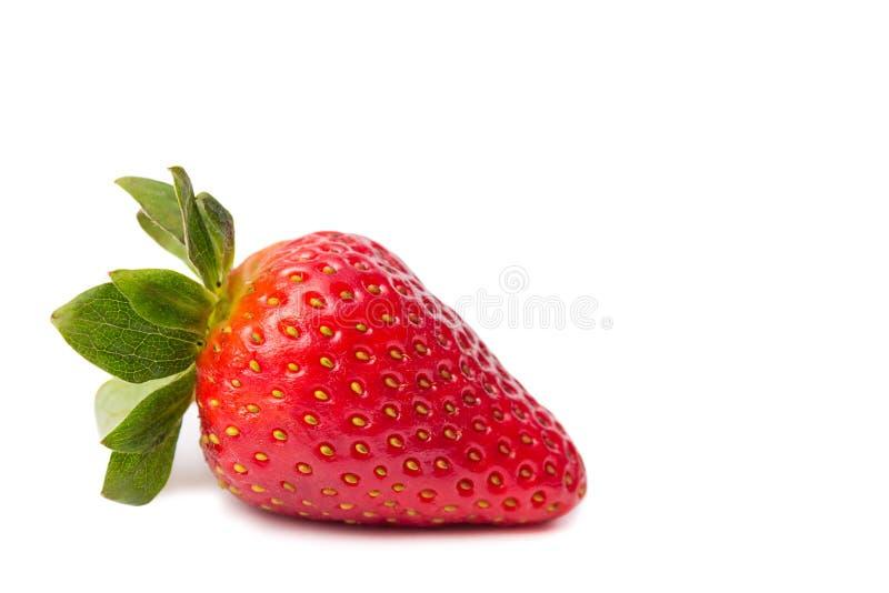 Duża czerwona truskawka zamknięta w górę bielu na, ścinek ścieżka zdjęcia royalty free