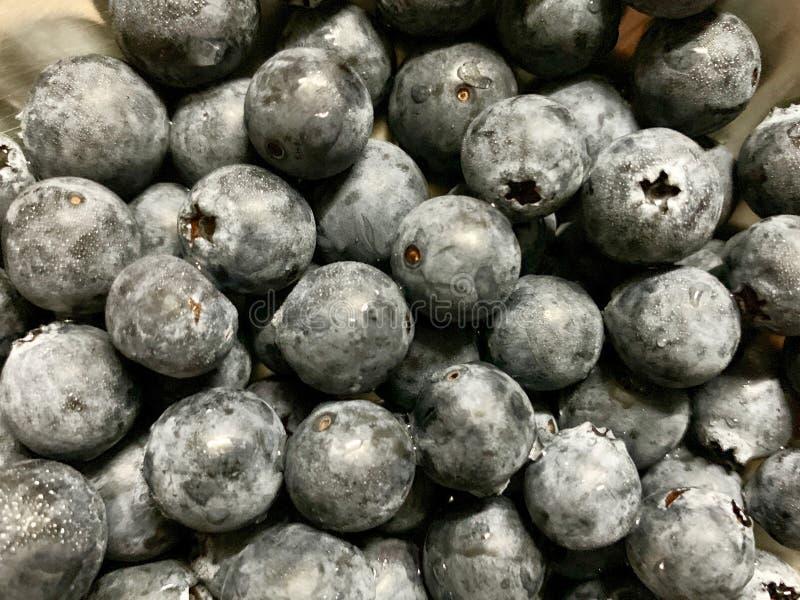 Dużo świeży czarnej jagody tło czarna jagoda na tacy nierdzewnej na półce w supermarkecie z plamy i cienia backgroun dużo zdjęcie royalty free