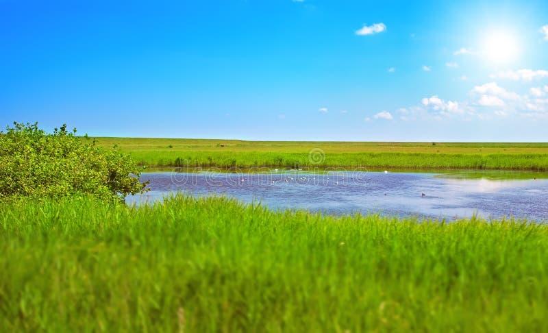 Duński lato krajobraz zdjęcie royalty free