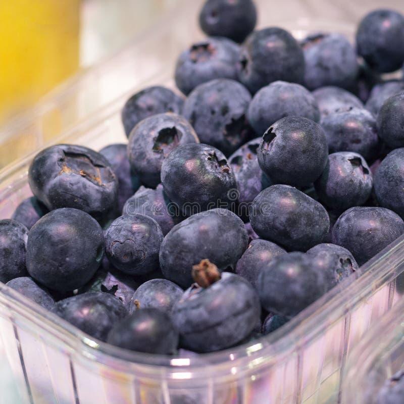 Duża świeża dojrzała organicznie naturalna czarna jagoda w pakunku na showplace w rynku zdjęcia stock