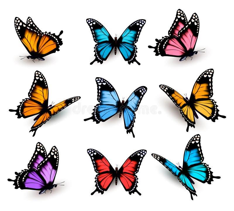 Duża kolekcja kolorowi motyle ilustracja wektor