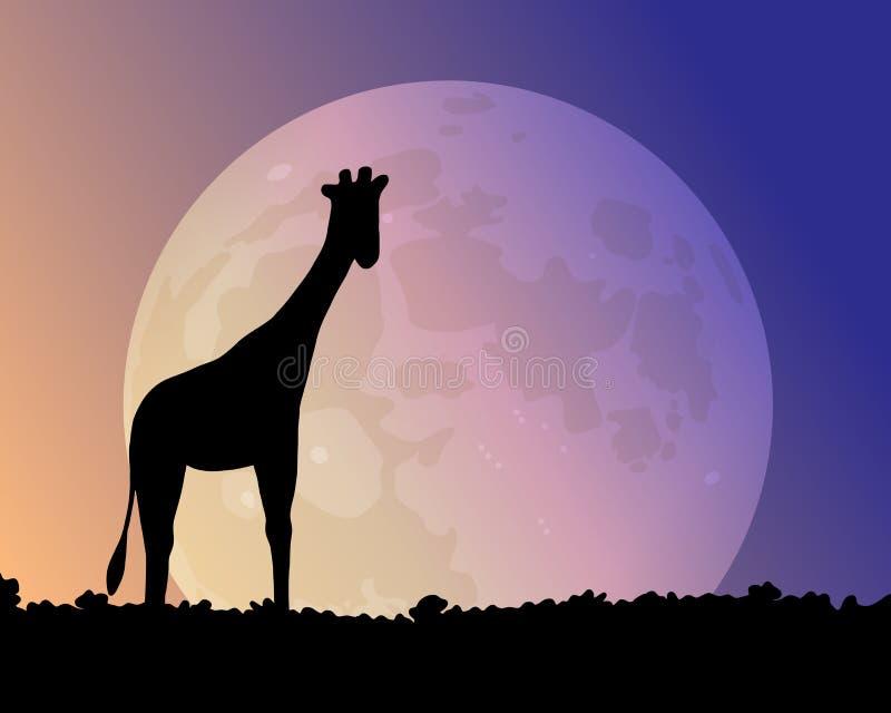 Duża księżyc w nocnym niebie Żyrafy sylwetka ilustracji
