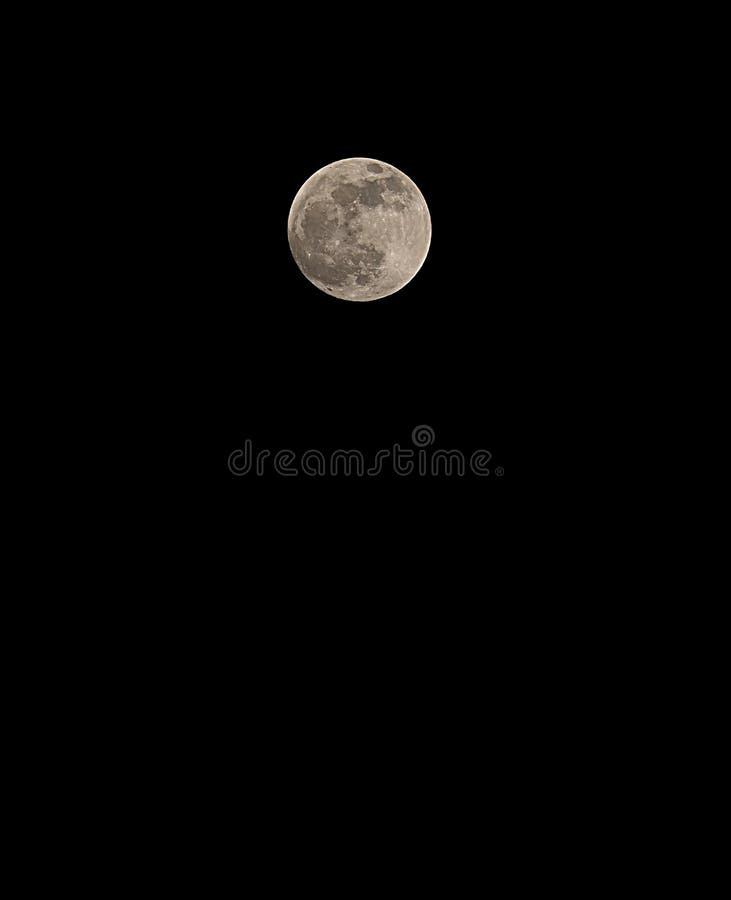 duża księżyc w pełni w czarnym niebie przy północą fotografia stock