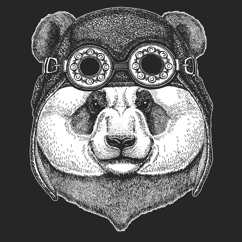 Duża panda Bambusa niedźwiedzia ręka rysujący wizerunek dla tatuażu, emblemat, odznaka, logo, łata Chłodno zwierzęcego jest ubran royalty ilustracja