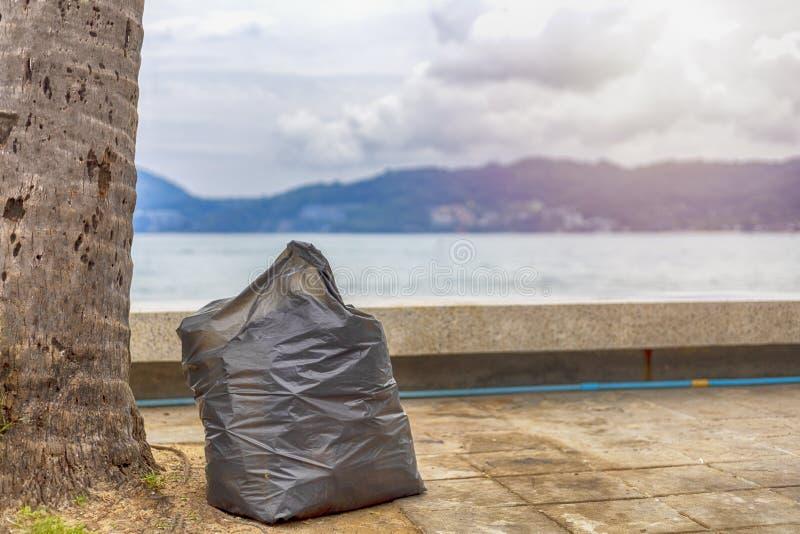 Duża plastikowa torba na śmiecie na chodniczku pod kokosowym drzewkiem palmowym blisko plaży zdjęcia stock