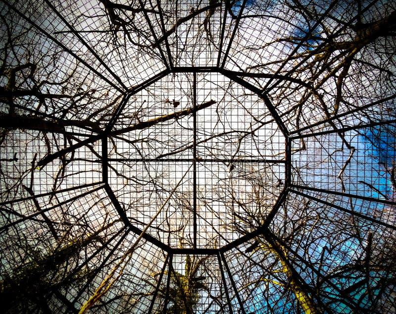 Duża ptasia klatka otaczająca wiele drzewami fotografia stock