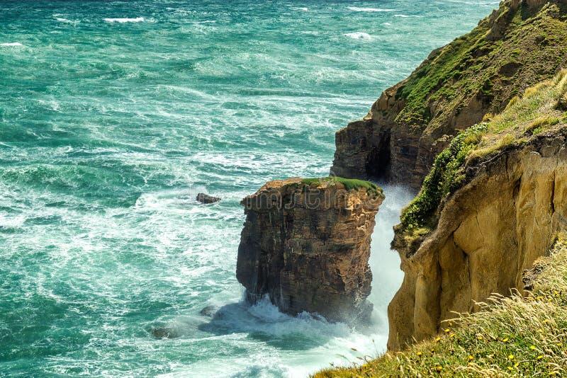 Duże fala z bielem pienią się miażdżenie w piaskowate falezy w Nowa Zelandia zdjęcia royalty free