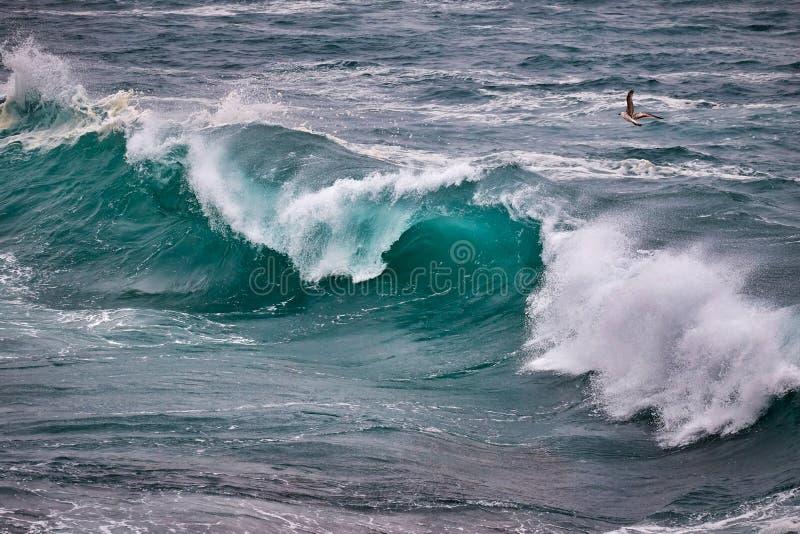 Duże fale na oceanie w wietrznym dniu fotografia royalty free