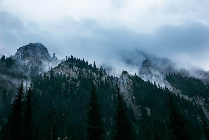 duże krajobrazowe halne góry Tien shan Dolina rzeczny Lewy Talgar kazakhstan zdjęcia royalty free