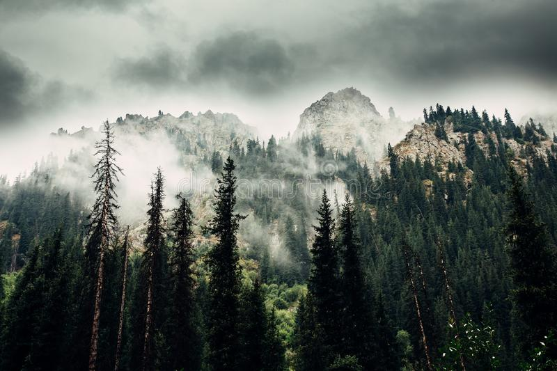 duże krajobrazowe halne góry Tien shan Dolina rzeczny Lewy Talgar kazakhstan fotografia royalty free