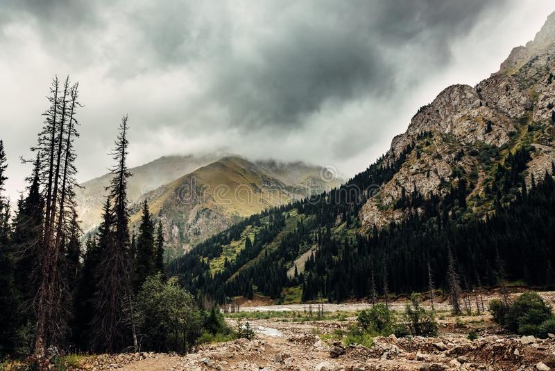 duże krajobrazowe halne góry Tien shan Dolina rzeczny Lewy Talgar kazakhstan obrazy royalty free
