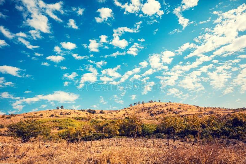 duże krajobrazowe halne góry Wzgórze Golan, Izrael obraz stock