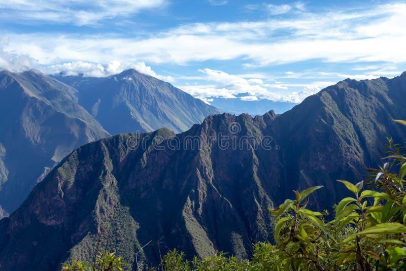Dużej wysokości dżungli luksusowa flora w zielonej Rio Bianco dolinie po Choquequirao przepustki, Andes, Peru obrazy royalty free