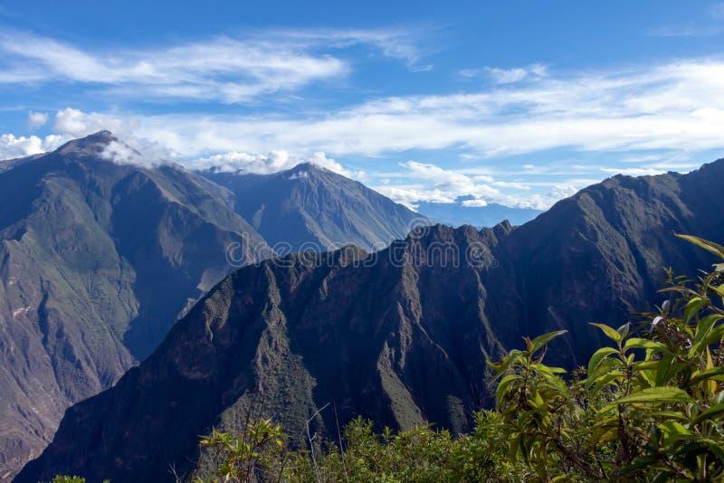 Dużej wysokości dżungli luksusowa flora w zielonej Rio Bianco dolinie po Choquequirao przepustki, Andes, Peru zdjęcie stock