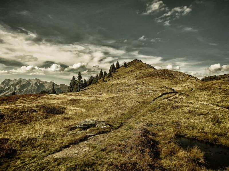 Dużej wysokości góry sceniczny krajobraz z wycieczkować ścieżkę obrazy royalty free