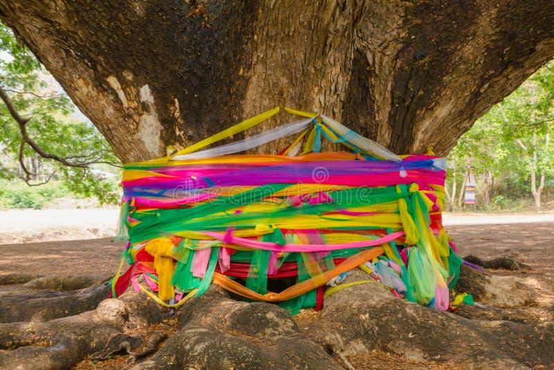 Dużo barwią tkaninę wokoło drzewa są jak święta rzecz obrazy royalty free