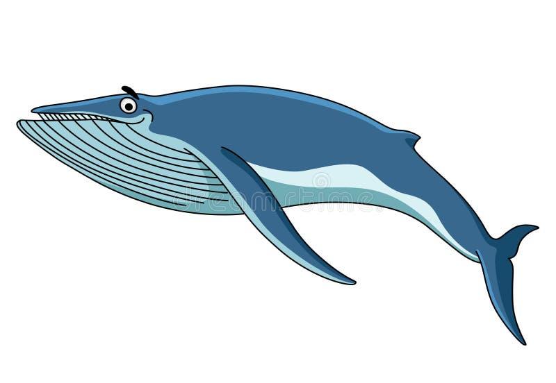 Duży błękitny baleen wieloryb royalty ilustracja