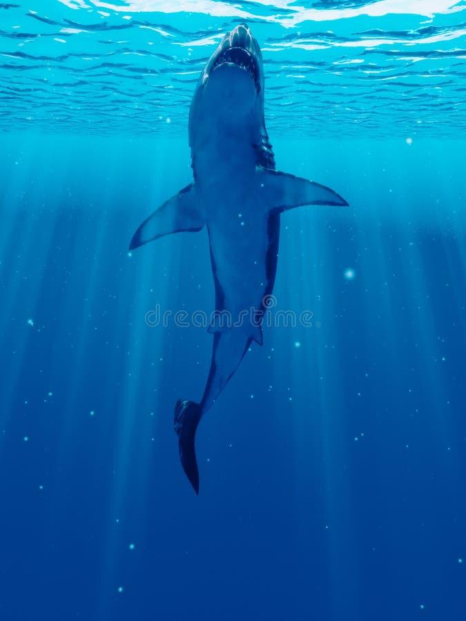 Duży biały rekin royalty ilustracja