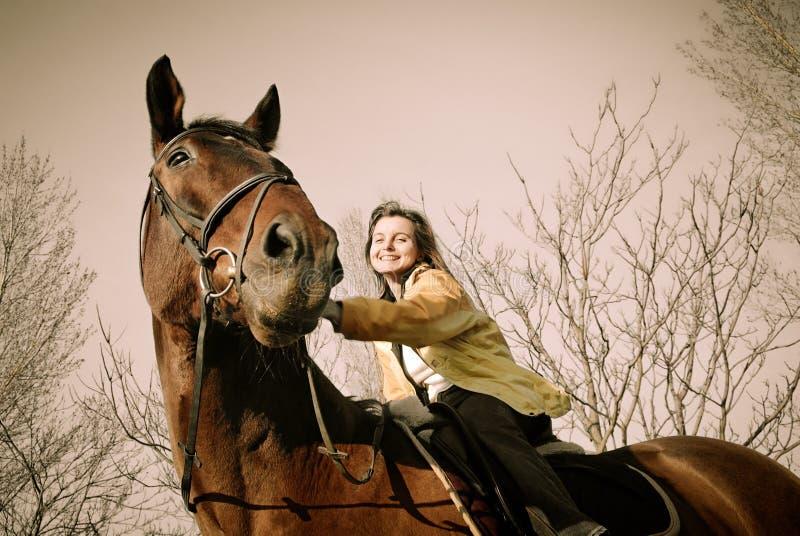 duży browm końska jeździecka kobieta zdjęcia stock