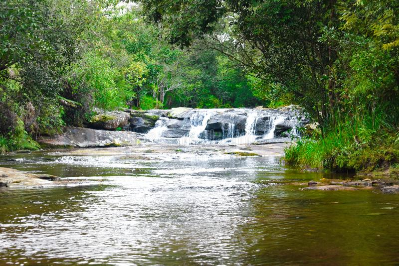 Duży drzewny spada puszek krzyżuje siklawę przy Phu Kra Dueng parkiem narodowym Loei Tajlandia fotografia royalty free