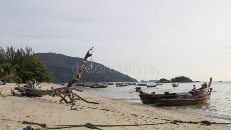 Duży dziwaczny suchy drzewo z sylwetką longtail łódź przy wschodem słońca fotografia royalty free