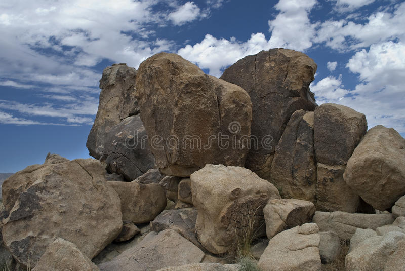 duży głazów Joshua park narodowy drzewo obrazy royalty free