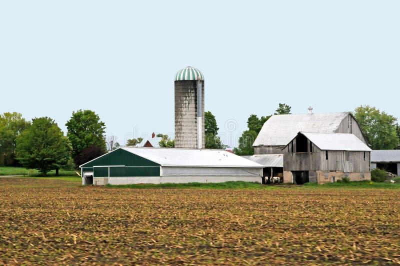 duży gospodarstwo rolne zdjęcie stock