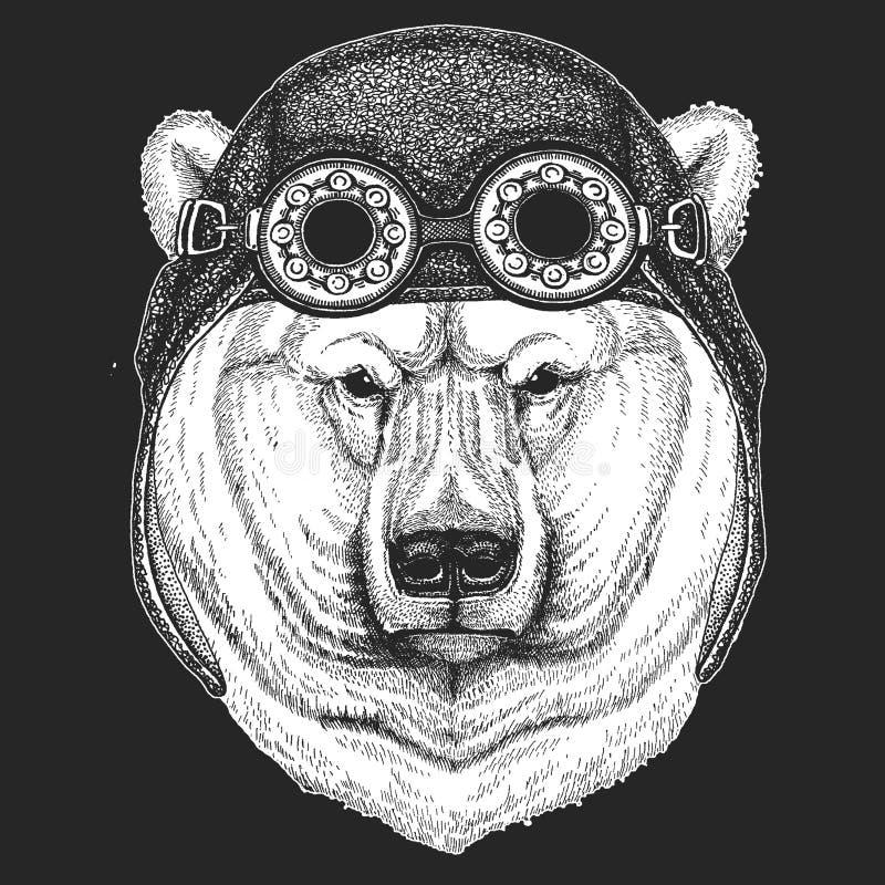 Duży niedźwiedź polarny, Białego niedźwiedzia ręka rysująca ilustracja dla tatuażu, koszulka, emblemat, odznaka, logo, łata Chłod royalty ilustracja