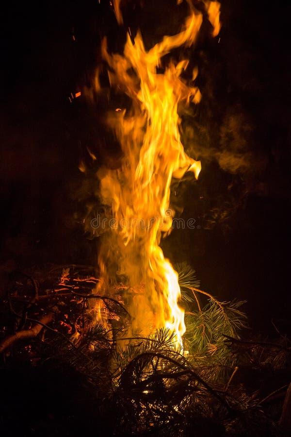 Duży płomień nocy ognisko zdjęcia royalty free