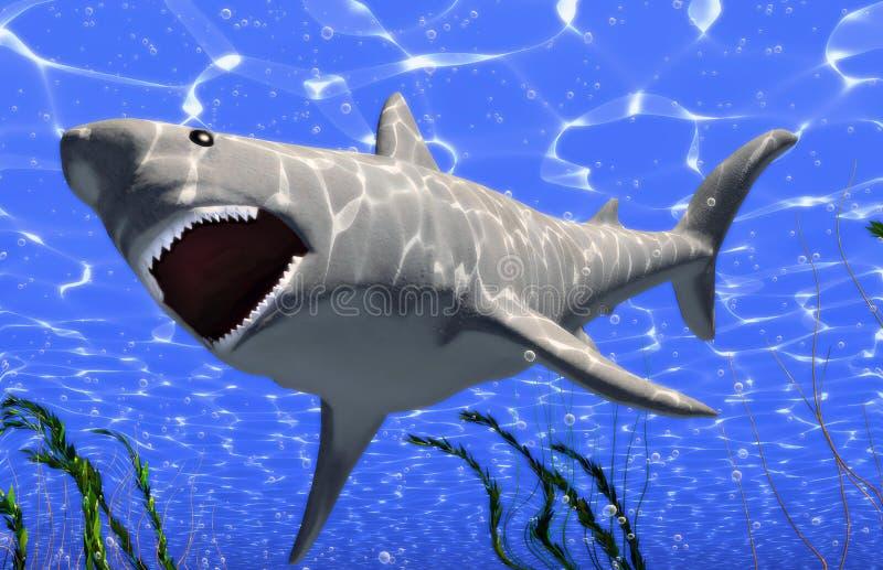 Duży rekin royalty ilustracja