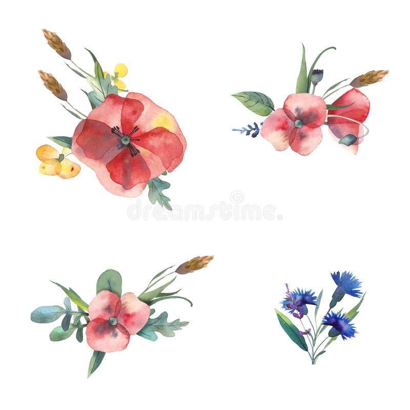 Duży set akwarela elementy - liście, ziele, kwiaty Botaniczna kolekcja zawiera maczki, cornflowers, jaskiery, spikelets ilustracja wektor