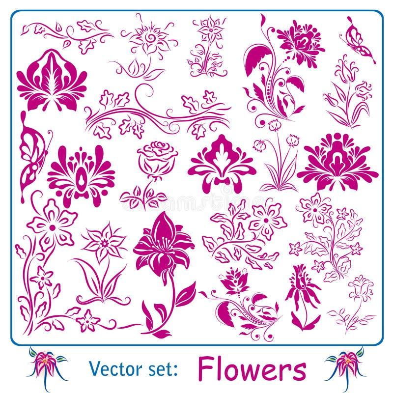 Duży set kwiaty ilustracji