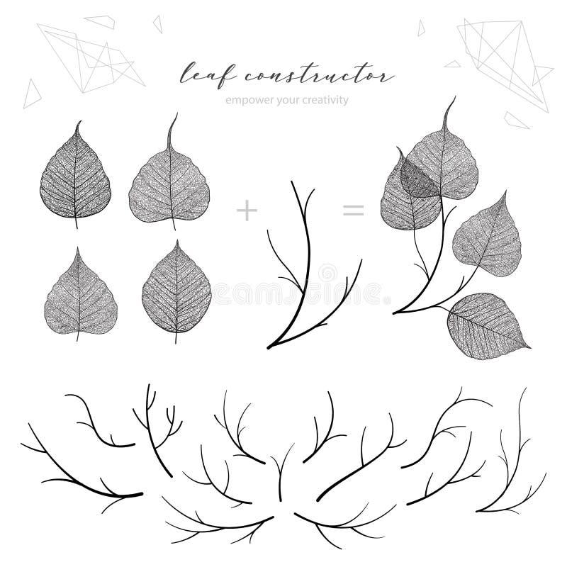 Duży set liść żyły, gałąź, liść, kwiat, spadek, wiosna, lato Szczegółowa wektorowa makro- ilustracja, odizolowywająca na białym b ilustracja wektor