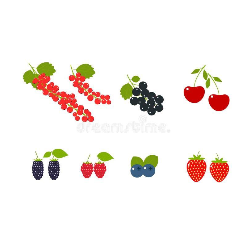 Duży set soczyste jagody, truskawka, malinka, wiśnia, czerwony rodzynek, czarny rodzynek, czarne jagody, czernica ilustracji