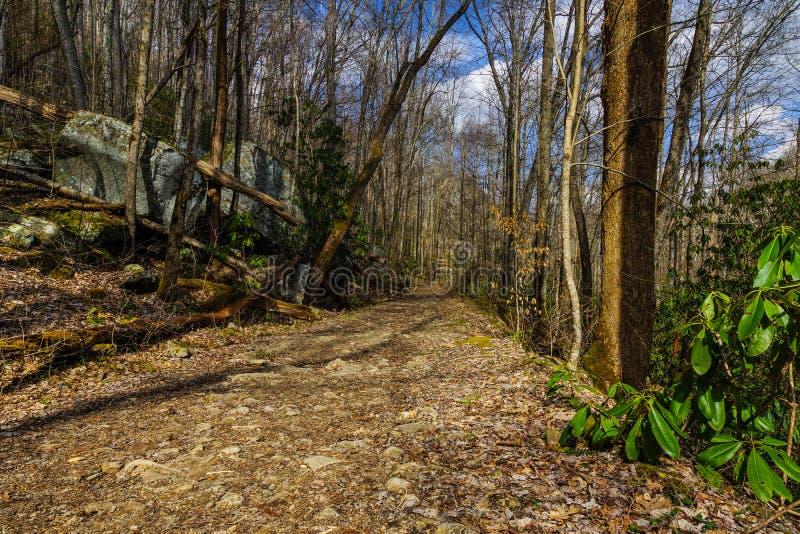 Duży zatoczka ślad, Great Smoky Mountains obrazy stock