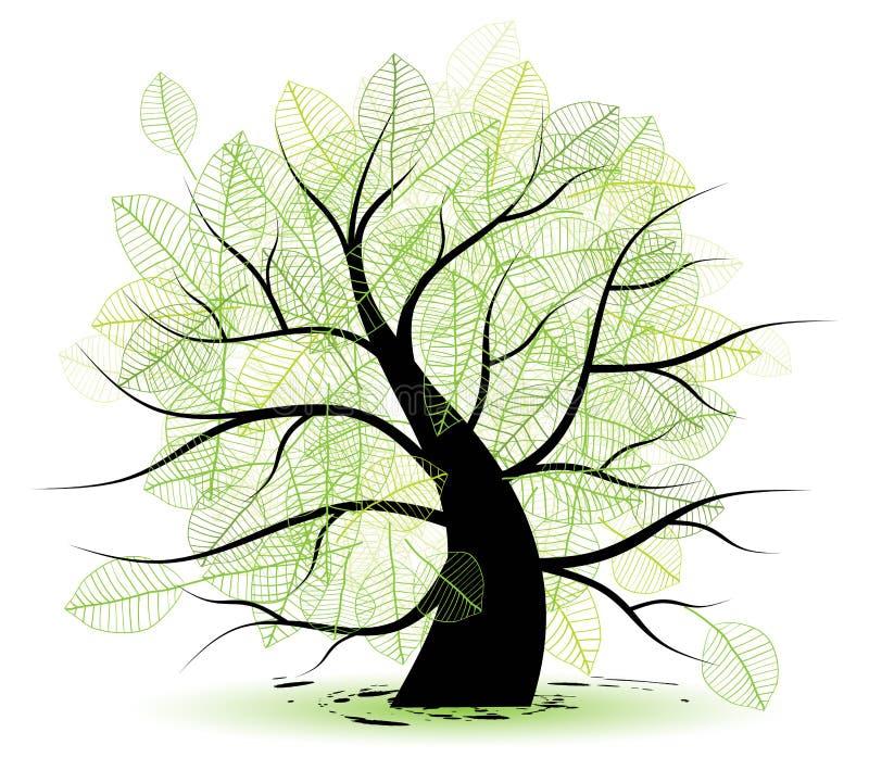 duży zielonego liść stary drzewo royalty ilustracja