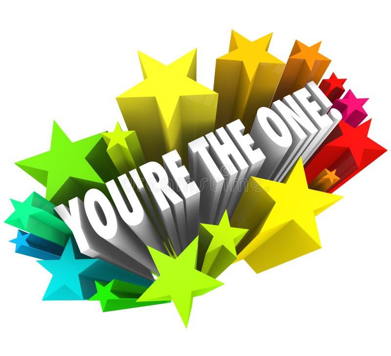 Du är den uttrycker stjärnor valt kandidatöverkantval royaltyfri illustrationer