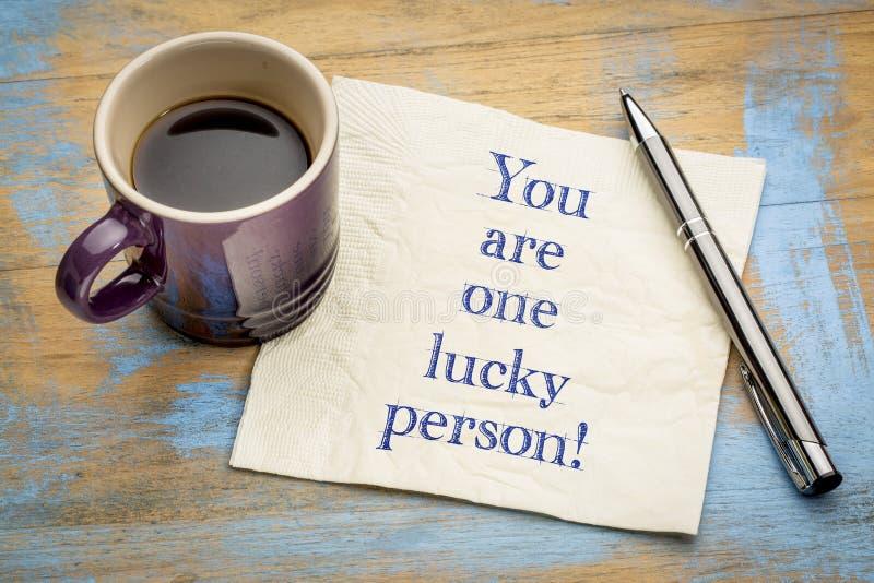 Du är en lycklig person! royaltyfri fotografi