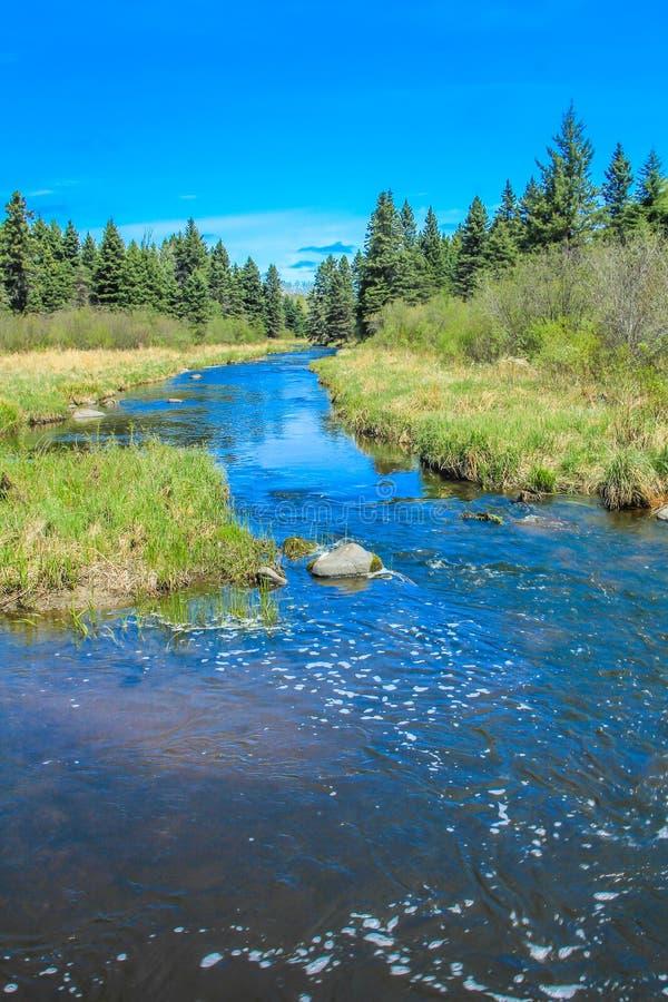 Du bord de la route, parc national de monte de montagne, Manitoba, Canada photographie stock