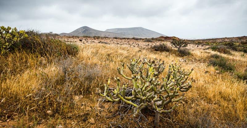 Download Duże Krajobrazowe Halne Góry Zdjęcie Stock - Obraz złożonej z ziemia, środowisko: 53791844