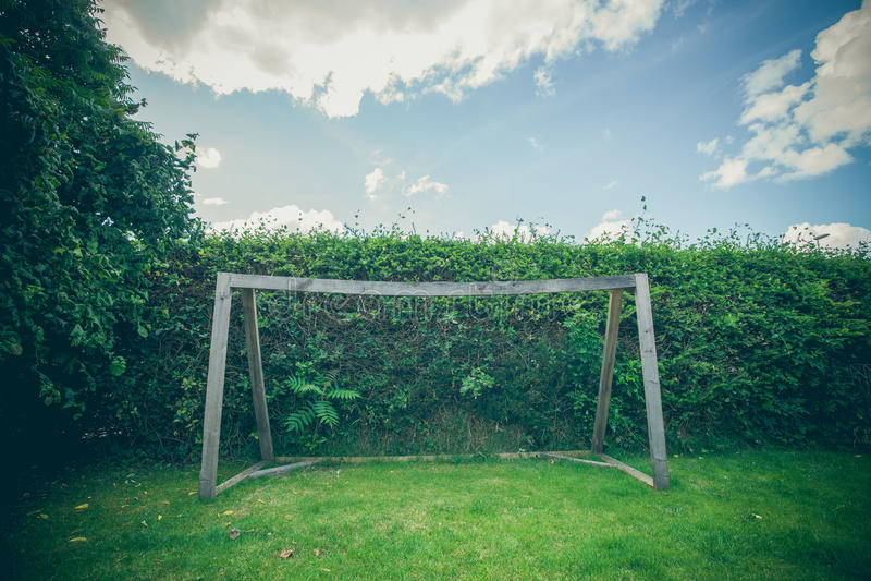 But du football d'arrière-cour sur une pelouse verte images libres de droits