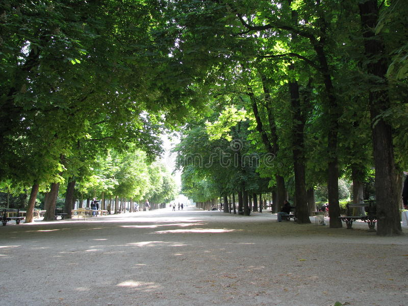 du jardin luxembourg royaltyfria bilder